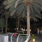 Дубай второй по величине эмират в составе ОАЭ
